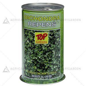 Seme per prato Padana Sementi DICHONDRA REPENS lattina da 0,5 KG