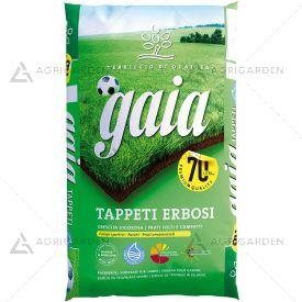 TerraBrill Terriccio GAIA Tappeti Erbosi sacco da 70lt per prati folti e compatti.
