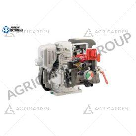 Motopompa AR 252/Honda 4T 4,8 HP, manometro, regolatore di pressione. Per trattamento