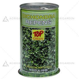Seme per prato Padana Sementi DICHONDRA REPENS lattina da 1 KG