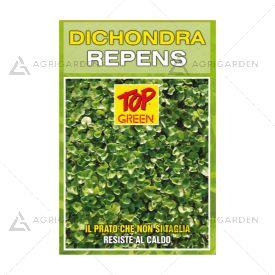 Seme per prato Padana Sementi DICHONDRA REPENS sacco da 25 KG