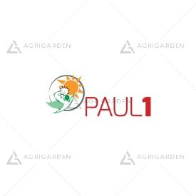 Seme per prato Padana Sementi PAUL 1 CYNODON DACTYLON lattina da 0,5KG