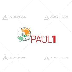 Seme per prato Padana Sementi PAUL 1 CYNODON DACTYLON sacco da 25KG